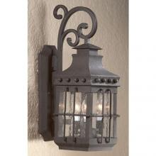 Troy BFCD8974NB - One Light Natural Bronze Wall Lantern